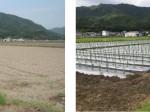 オリックス・養父市などが農業生産法人を設立。植物工場の直販ルートを活用し、販売・流通の一体型モデルを構築