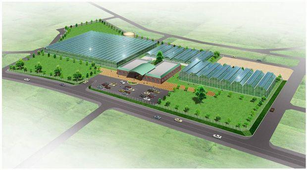ヤンマー、岡山県倉敷市に水耕栽培・環境制御やバイオ技術開発拠点を設置