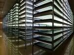郵船商事による植物工場が福井に完成、1日1万株の大規模・人工光型施設へ