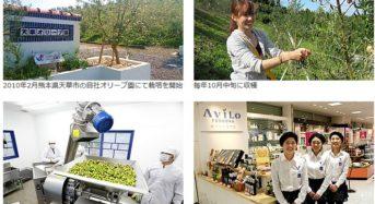 九電工、熊本・天草市にオリーブの自社農園を開設。6次産業化も視野に