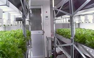 ユニテック、植物工場用のユニット式クリーンルームを開発