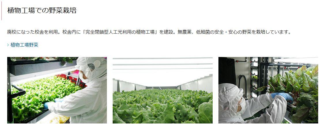 物流大手のセンコー、廃校利用した農業・植物工場「センコースクールファーム鳥取」を開設