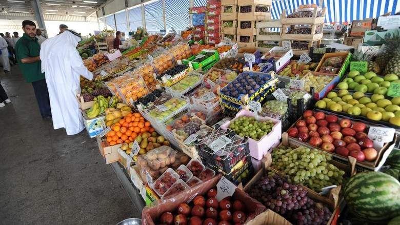 中東ドバイの植物工場による水耕野菜の生産事例/1haの大規模施設・オランダ技術を導入