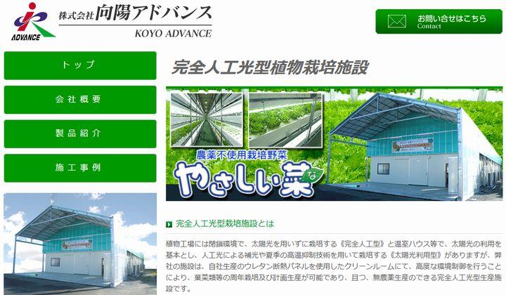 断熱パネルメーカー向陽アドバンス、植物工場による野菜の生産・販売を開始