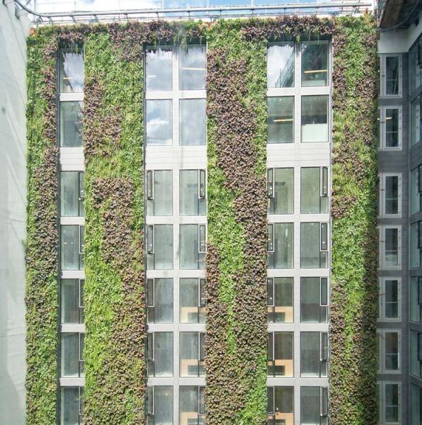 リノベーションしたロンドン・ホテル「Minthotel」ヨーロッパ最大級の壁面緑化を導入