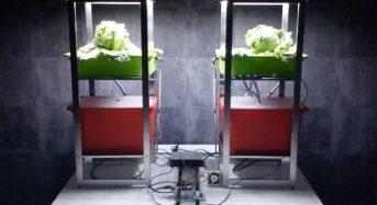 ブリリアントサービス、Android OSをベースにしたLED植物工場システムを開発