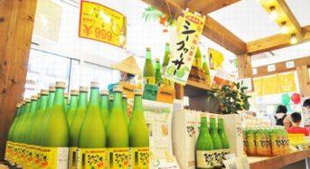 沖縄シークヮーサー飲料など、ドバイ・中東市場へ輸出開始