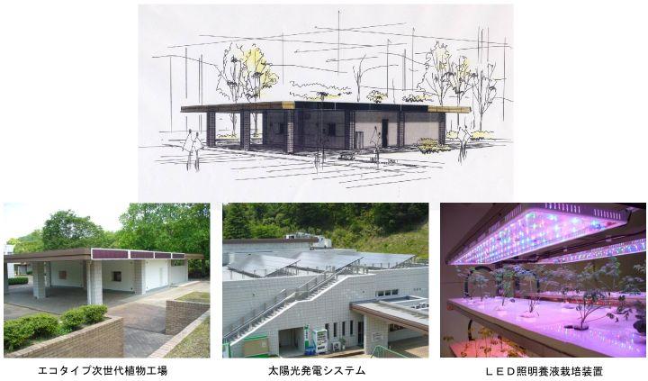 京都府立大学、太陽光&燃料電池による発電で必要電力をまかなうエコタイプ植物工場が完成