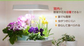 山善による家庭用・植物工場キット「LEDプランターお部屋畑」を販売