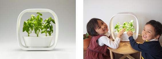 旭化成ホームズ、家庭用の小型 植物工場キット「ベジユニ」を販売