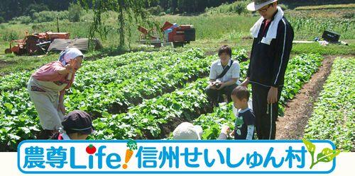 信州せいしゅん村、園芸治療「農村セラピー」サービスを開始。 農業による癒され感を数値化
