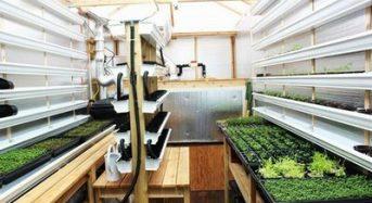 カナダ・バンクーバーにおける都市型農業と植物工場