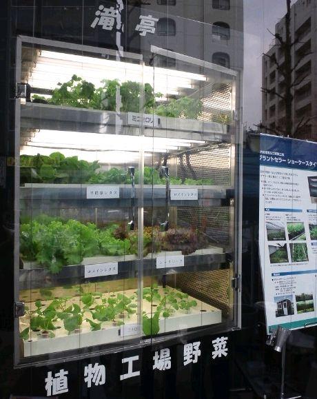 エスペックによる植物工場事業の本格参入。店舗併設型の小型商品も販売へ