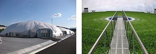 日立製作所、ドーム式植物工場システムのグランパに1億円を出資