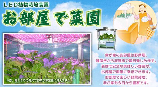 十和田技研、赤・青色LEDを採用した家庭用植物工場キット