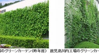 京セラグループ、国内・海外34拠点でグリーンカーテン生育・過去最大の総面積を予定