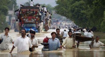 洪水被害が甚大なパキスタン。高い関税でもインド産のジャガイモ・トマトの需要が急増