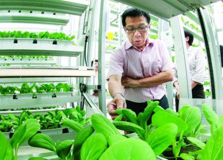 シンガポール政府と航空機メーカーが連携、回転する多段式・植物工場のデモプラントを建設