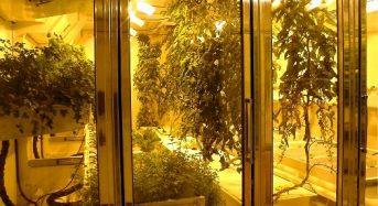 米国・日本における南極の植物工場プロジェクト。将来的には全面LED光源による施設も視野に