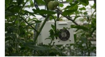 NEC、JA小松のトマト農家へICTクラウドサービスを提供