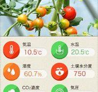 低価格施設園芸向けモニタリングシステム「みどりクラウド」を開発