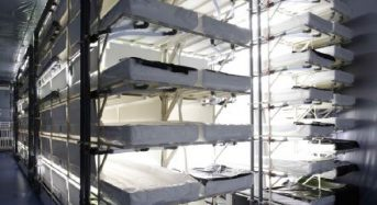 パナソニック、エスジーグリーンハウスに「人工光型植物工場システム」を納入
