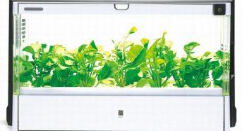 ダスキン、家庭用植物工場キットのレンタルサービスを開始