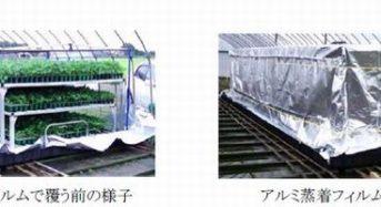 日立化成、炭酸ガスでイチゴ苗に寄生するハダニ防除システムを販売開始