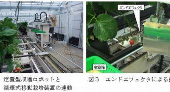昼間にも収穫可能な定置型のイチゴ収穫ロボットを開発