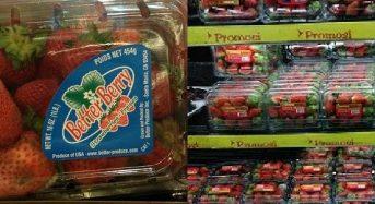 マレーシア市場におけるイチゴ商品の可能性