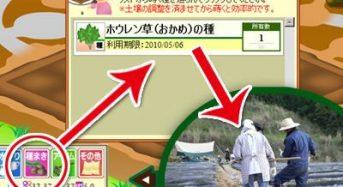 伊予銀行がオンライン・遠隔農園を運営するテレファームに出資