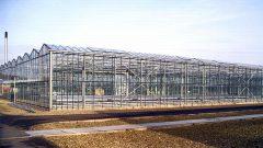 イギリスにおける施設園芸の技術開発機関、LED光源・多段式を採用した植物工場が稼働