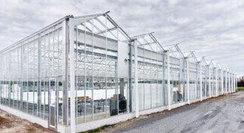 三菱樹脂、オーストラリア現地法人にて太陽光型植物工場が稼働