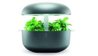 フィンランド生まれの家庭用植物工場「Plantui Smart Garden」を日本で販売開始