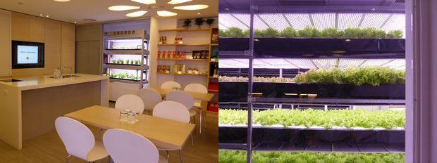 台湾・植物工場マッチング視察ツアーの報告/約20年の老舗メーカーから最安値での野菜販売を目指す企業まで