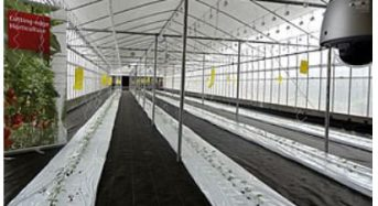 富士通、植物工場など日本の最新農法を紹介するショールームをベトナム・ハノイに開設