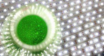カナダの藻類ベンチャー、閉鎖型・植物工場とアクアポニクスの融合設備にてスーパーフードを生産