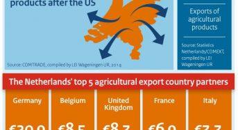 植物工場先進国オランダ、2015年農産品輸出額が過去最高。世界2位のポジション維持