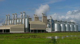 ミズーリ州立大学の巨大サイロを改修。世界最大の高さを誇る植物工場を建設