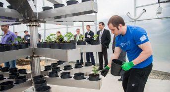 カナダのフレーザー·バレー大学が垂直多段式の植物工場ラボをオープン