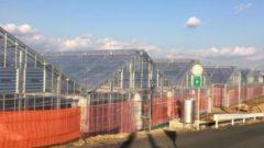 富士通・オリックスなど、大型 植物工場のスマートアグリカルチャー磐田を設立