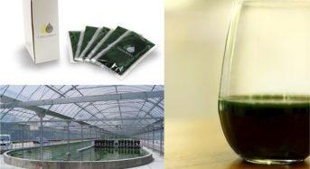 藻類スピルリナの生産・販売のタベルモ、コールドプレスジュースのコラボ商品を展開