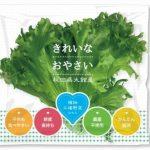 バイテックHD、1万株規模の植物工場レタス商品が秋田県大館市にて販売開始
