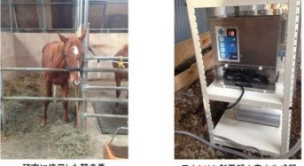 日本トリム、競走馬の90%が胃潰瘍を保有。電解水素水の飲用による予防効果を発表