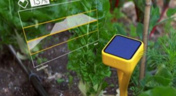 イノテック、米国ベンチャーEDYN社のスマート農業・ガーデニング用土壌センサーを販売開始