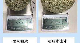 日本トリム、電解水素水の農業活用により草津メロンの収穫量130%向上、糖度18度前後を実現