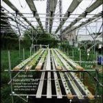 セプトアグリ・千葉工業大学など共同研究による「水耕ソーラーシェアリング」に関する発表資料を公開