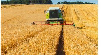 三井物産、米国モンサント社から麦用種子処理殺菌剤Latitude事業資産を買収