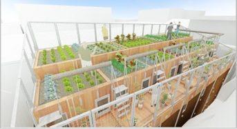 クリーク・アンド・リバー、大田区初の屋上菜園付き賃貸「菜園長屋」完成内覧会を1月15日に開催
