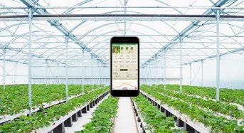 セラクがタキイ種苗と農業IoTサービス「みどりクラウド」販売代理店契約を締結
